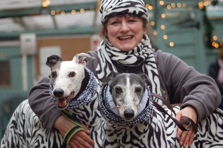 Baby and Beryl: The most fashion forward hounds in town (Photo by Helen Baldwin).