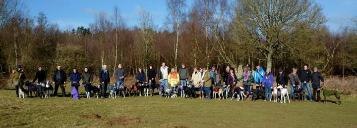 42 dogs soaking up the West Sussex sunshine this morning.